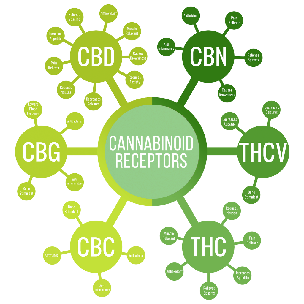 CBD entourage effect